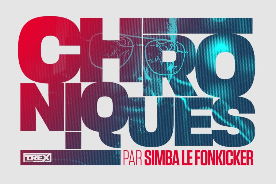 chroniques t-rex magazine par SIMBA LE FONKICKER